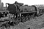 """Henschel 27317 - DB  """"HL 1021"""" 12.08.1966 - Frankfurt (Main)-Nied, AusbesserungswerkReinhard Gumbert"""