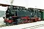 """LKM 132027 - DB AG """"099 750-2"""" 16..01.1995 - Cranzahl, BahnhofTheo Stolz"""