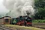 """LKM 132035 - DR """"99 794"""" 13.07.2019 - Sehmatal-Cranzahl, Bahnhof CranzahlKlaus Hentschel"""